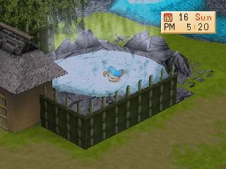 Screenshot Thumbnail  / Media File 10 for Harvest Moon - Back to Nature [U]
